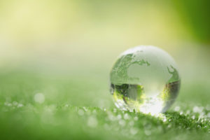 biodegradabilità_etichetta